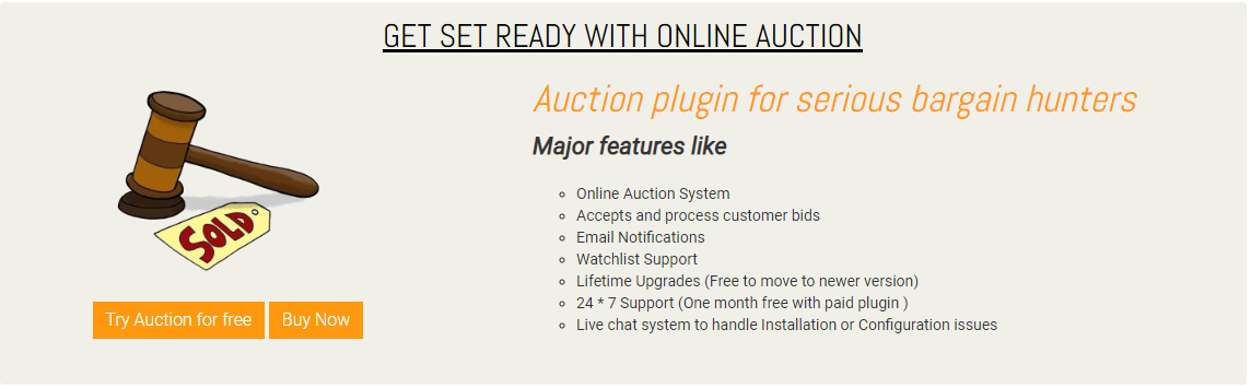 nopCommerce Auction